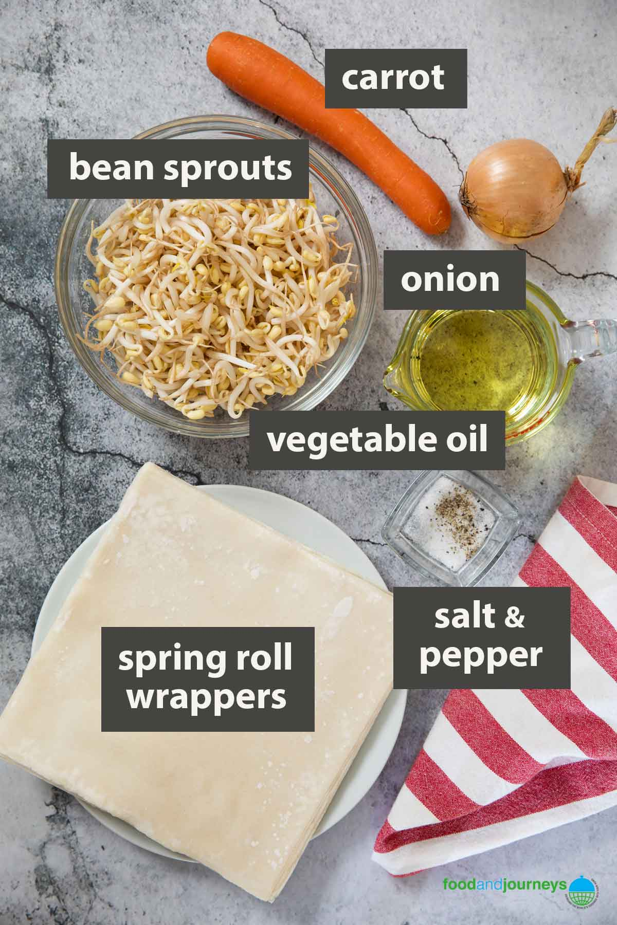 An image showing all the ingredients to prepare to make vegetable spring rolls.
