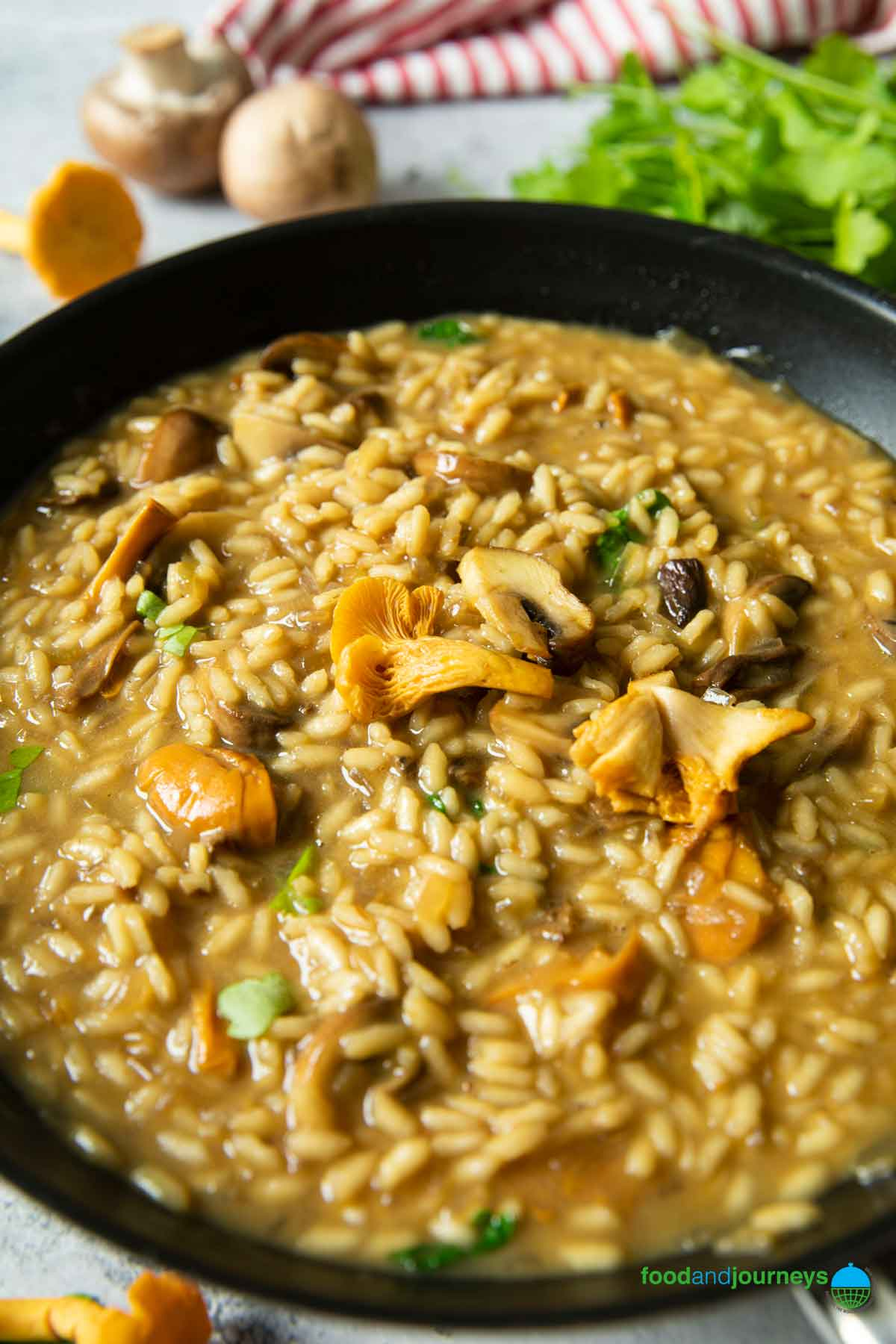 A closer shot of a pan of risotto ai funghi, highlighting the creaminess and the bits of mushrooms and parsley in the dish.